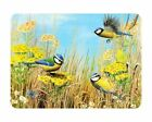 Glass Chopping Board Blue Tit Birds In Field Kitchen Worktop Saver