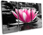 Water Lily Flowers Floral TREBLE CANVAS WALL ART Picture Print VA