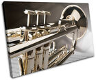 Trumpet INSTRUMENTS  Musical SINGLE CANVAS WALL ART Picture Print VA