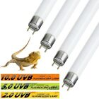 REPTILEPRO FLOURESCENT GLO TUBE LAMP UV BULB VIVARIUM REPTILE REPTI PET LIGHT