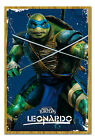 Teenage Mutant Ninja Turtles Leonardo Framed Cork Pin Memo Board With Pins