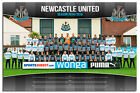 Newcastle United FC Team Photo 2014 / 2015 Poster New - Maxi Size 36 x 24 Inch