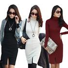 Women Long Sleeve Turtleneck Bodycon Casual Lady OL Slim Jumper Mini Dress Tops