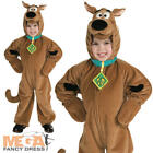 Deluxe Scooby Doo Childs Fancy Dress Boys Kids Cartoon Dog Halloween Costume