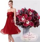 BNWT RENEE Corsage Cranberry Red Chiffon Prom Evening Bridesmaid Dress UK 6 - 18