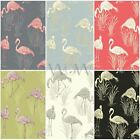 LAGOON VINTAGE FLAMINGO FEATURE WALLPAPER GREEN/PINK 252602 & GREY/CORAL 252603