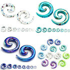 Pair Acrylic Snail Spiral Horn Ear Taper Stretcher Plugs Expander Gauges Earring