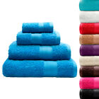 CL Home 100% Cotton 450 GSM Soft Luxury Extra Large Bath Sheet Towels