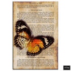 Butterfly Vintage Collage  Animals BOX FRAMED CANVAS ART Picture HDR 280gsm