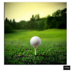 Golf Ball on Tee   Sports BOX FRAMED CANVAS ART Picture HDR 280gsm