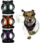 EZI - Pet Dog Puppy Lead Leash Harness Clips Collar Auto Safety Belt Adjustable