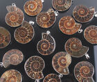 Natural AMMONITE FOSSIL beads Pendant  L13983