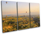 Hot Air Balloon Valley Landscapes TREBLE CANVAS WALL ART Picture Print
