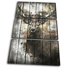 Deer Stag Forest Shabby Chic Vintage TREBLE CANVAS WALL ART Picture Print