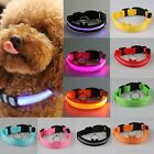 New LED Light Dog Safety Collar Cat Flashing Light Up for Night Nylon Adjustable