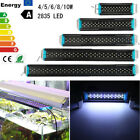 20-70cm 4W/5W/6W/8W/10W Bule & White Aquarium Fish Tank 2835 LED Lamp Light 220V