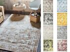 Transitional Large Persian Design Area Rug Faded Small Vintage Style Carpet