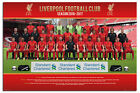 Liverpool FC Team Squad 2016 - 2017 Poster New - Maxi Size 36 x 24 Inch
