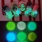 2g Glow In The Dark Powder Fluorescent Luminescent Noctilucent Nail Art Pigment