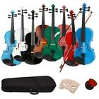 New 8 Colors 4/4 Full Size Basswood Acoustic Violin  w/ Case Rosin Bow Bridge