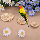 Parrot Bird Straw Hat Play Toys Cage Decoration Photograph Props Craft Bites Toy