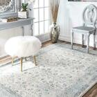 nuLOOM Floral Bordered Vintage Rio Area Rug in Aqua Blue and Gray