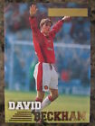 DAVID BECKHAM Soccer Cards*MANCHESTER UNITED*REAL MADRID* LIMITED