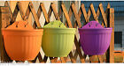 New Colorful Plastic Hanging Wall-mounted Flowerpot Home Gardening Plant Tools
