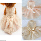 Pet Dog Wedding Lace Dress Tutu Cat Puppy Skirt Princess Clothes Flowers GIFT