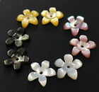 10PCS 10mm Charm  Pink Yellow White Black Natural Shell Flower beads