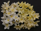 40 x Mulberry Paper Flowers LILY / LILLIES  40mm Craft flower Embellishments