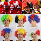 COUNTRY SUPPORTERS AFRO WIG EURO FOOTBALL RUGBY SPORTS EVENT FANCY DRESS LOT