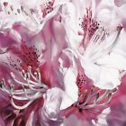 "Sarah Caswell ""froth And Flounce"" Canvas Print, Multi-colour, 40 x 40cm"
