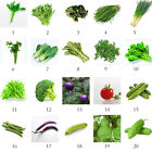 Non-Gmo Heirloom Garden Vegetable Seed Seeds Bank Survival Organic Plant Decor