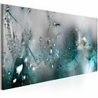 Home Decor Canvas Print Painting Wall Art Dew Beads dandelion no frame