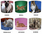 Cat Breeds Lampshades Ideal To Match Cat Cushions Cat Wall Stickers & Decals.