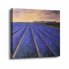 ArtWall Colette Baumback's 'Provence' Gallery-wrapped Canvas