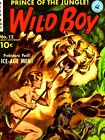 """Wild Boy Prince of the Jungle Comic Book Poster - Number 12 - 18"""" x 24"""""""