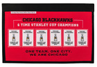 CHICAO BLACKHAWKS STANLEY CUP CHAMPIONS RAFTER RAISER BANNER HULL KANE TOEWS
