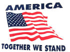 T-shirt Heavy Weight White: America Together We Stand. Back: USA image