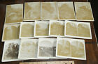 """LOT of 14 """"large mount"""" STEREOVIEWS / cabinet cards COLORADO ?"""
