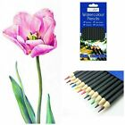 12 Pcs - Artist Pencils For Drawing Sketching Charcoal Watercolour Graded ART UK