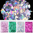 10g/Bag Holographic Nail Glitter Sequins Flakes Laser Silver Nail Art Tips Decor