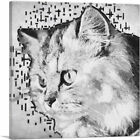 ARTCANVAS Persian Cat Breed White Canvas Art Print