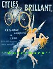 289677 Cycles Brilliant 1900 French E Bicycle Exposition GLOSSY PRINT POSTER DE