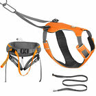 Ruffwear Omnijore Joring System with Dog Harnes, Human Hip Belt & Tow Line