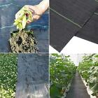 Heavy Duty Weed Control Fabric Membrane Garden Landscape Ground Cover Sheet