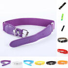 Toddlers Kids Buckle Waistband Faux Leather Adjustable Plain Casual Waist Belt