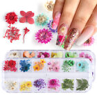 Real Dry Dried Flower Leaves 3D UV Gel Tips Nail Art Decoration Flowers Stickers