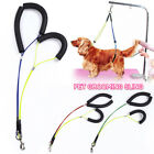 Pet Haunch No-Sit Holder Dog Cat Grooming Restraint Harness Leash Loop for Table